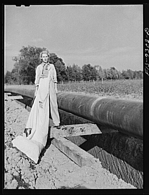 Little Rock, Arkansas to Missouri-Arkansas state line. War emergency pipeline from Longview, Texas to Norris City, Illinois. A cotton picker crossing the pipeline