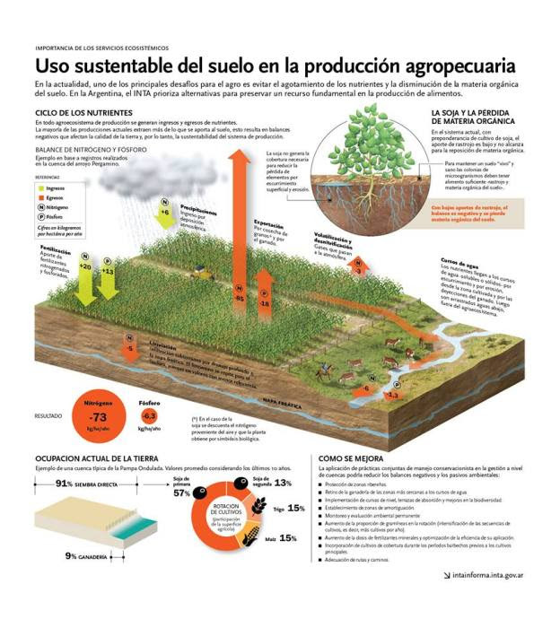 infografia suelos