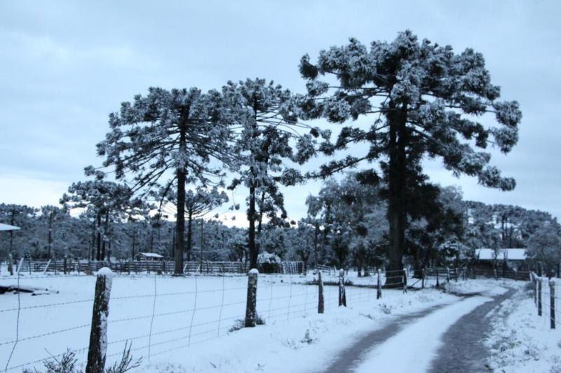 Leitora Marcia Zenf registrou a neve em Papanduva.:imagem 27