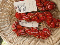 Wild Turkey sock yarn