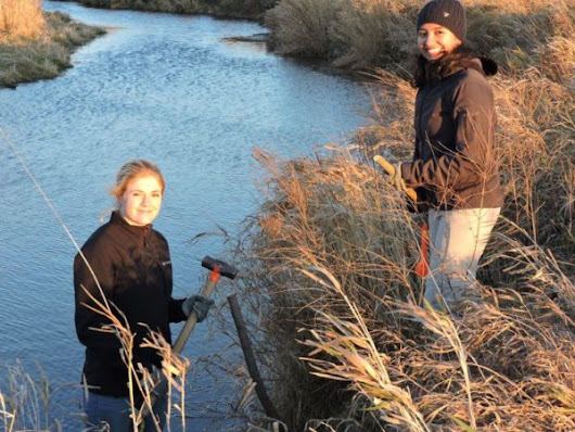 A creek revived: Students of all help restore Medway Creek | WWF-Canada Blog