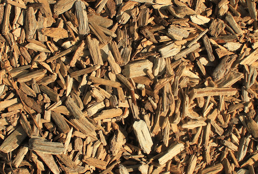Biomass supply chain emissions need more research - Logistics Manager