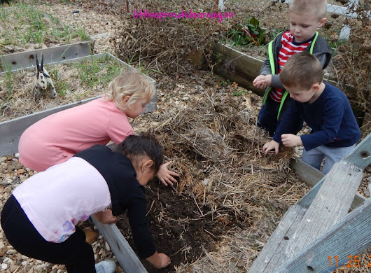 Prepping No Till Garden Beds for Spring - Little Sprouts Learning