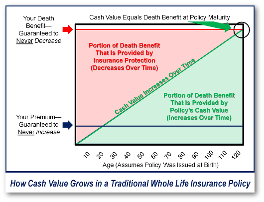 How Whole Life Insurance Works - Bank On Yourself