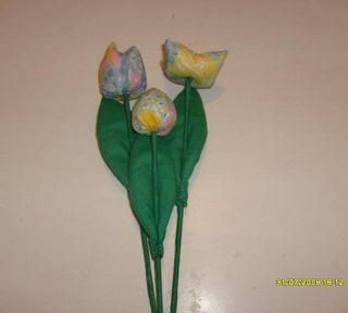 tulipa fuxico