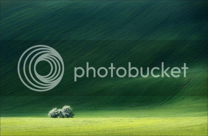 photo Vlad-Sokolovsky-4_zps7dbf2605.jpg