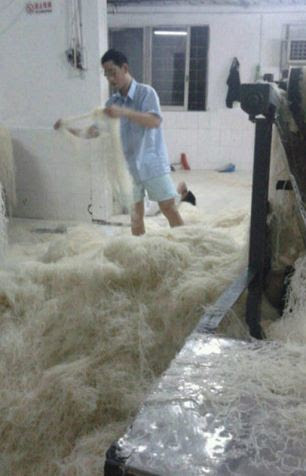 Workers were pictured wading through piles of noodles with no shoes on and without wearing hairnets