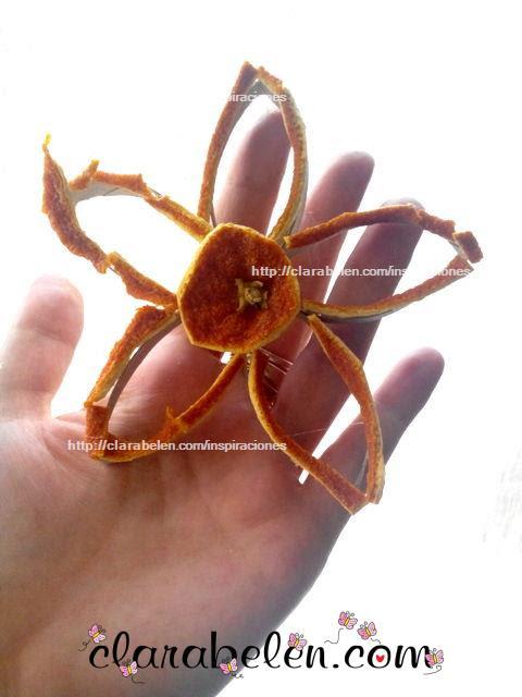 http://clarabelen.com/inspiraciones/4263/manualidades-cruzadas-flor-de-rollo-de-carton-y-cascara-de-naranjas-para-la-navidad/