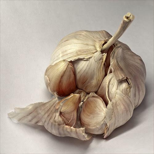 Lovely Garlic