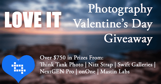 Love It! Photography Valentine's Day Giveaway