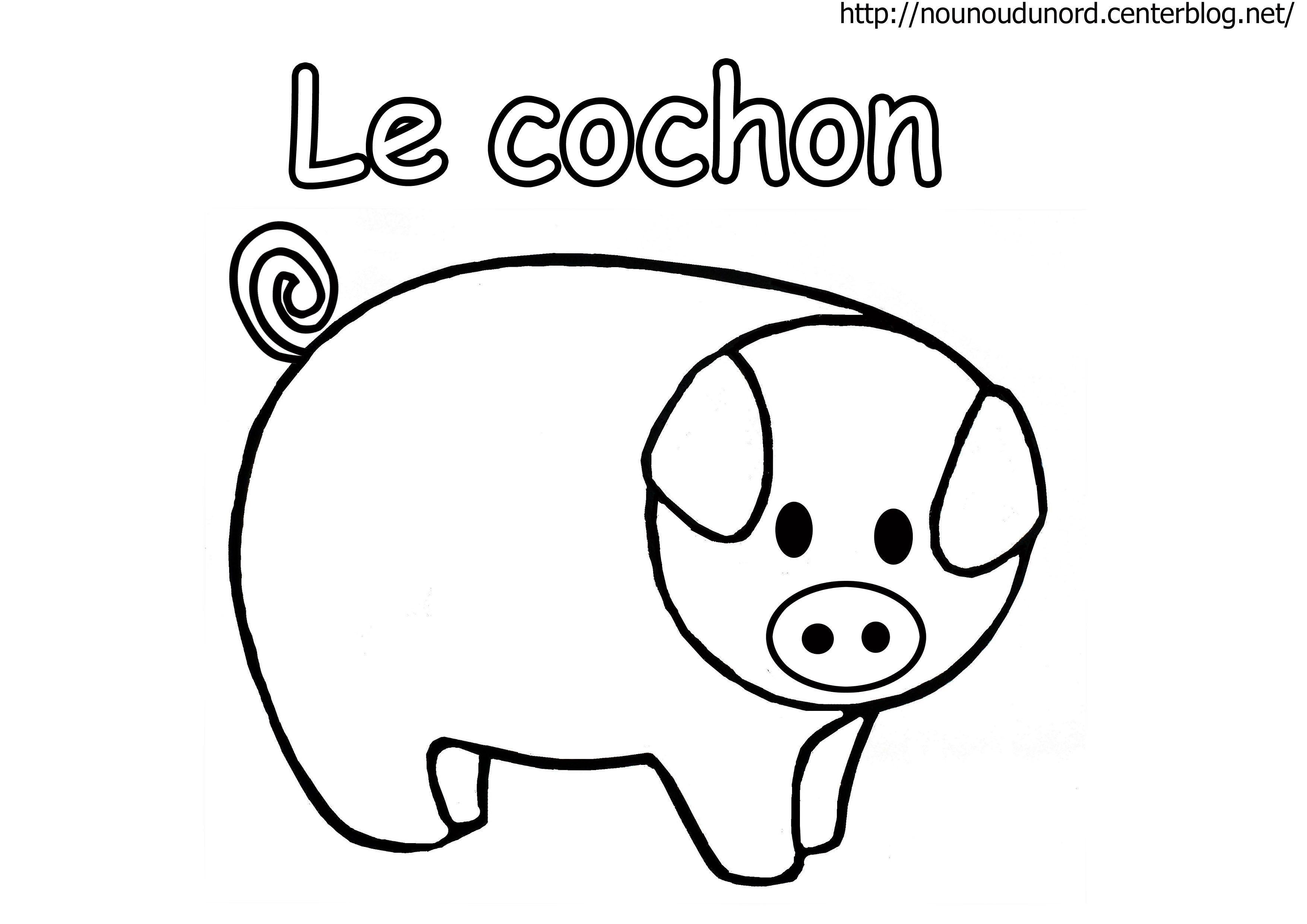 Dessin De Cochon Facile - Dessin et Coloriage