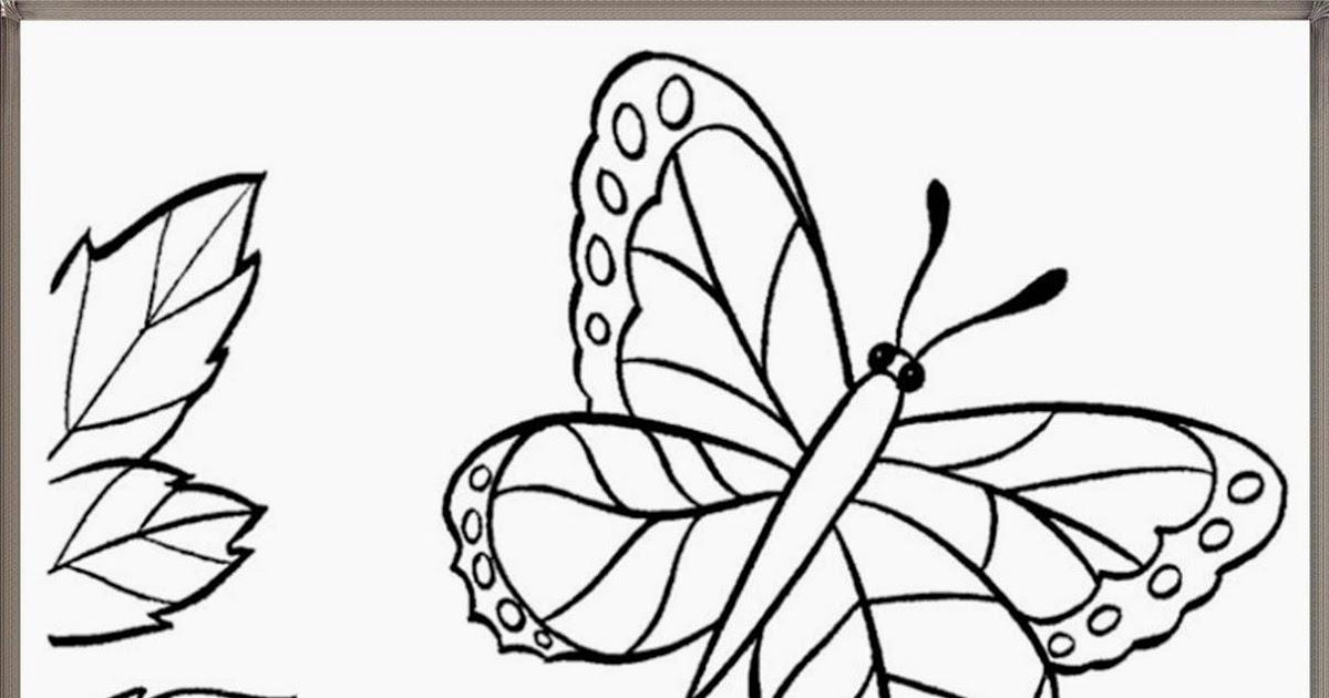 mewarnai gambar bunga dan kupu
