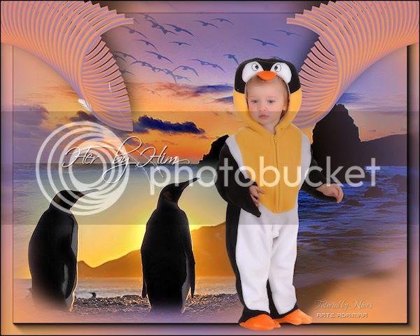 Adrimar- Pingüinos by Nines