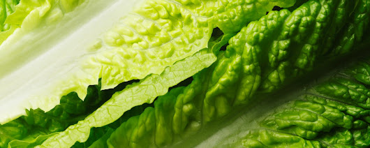 Avoid Romaine Lettuce for Now, Consumer Reports Says