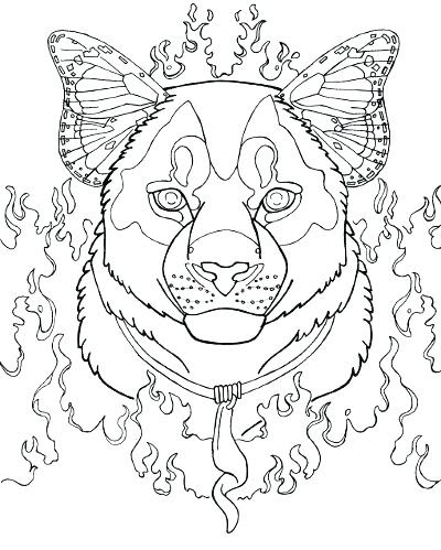 puma coloring pages at getcolorings  free printable colorings pages to print and color
