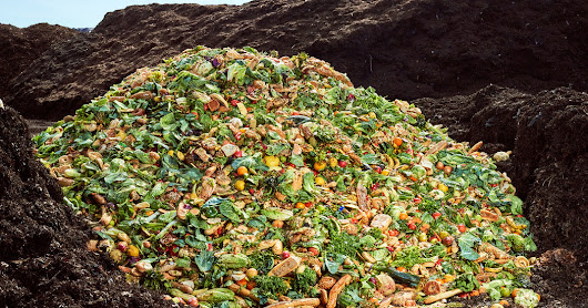 The Compost King of New York - The New York Times