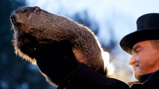 Groundhog Day 2017: Punxsutawney Phil Sees Shadow, Predicts 6 More Weeks of Winter | The Weather Channel