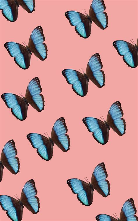 butterflies iphone background iphonebackgrounds phone