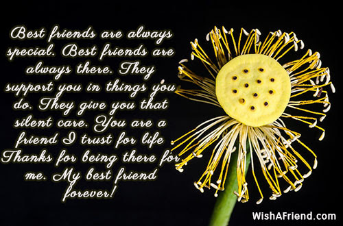 Elegant Best Friend Always There For You Quotes
