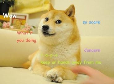 the original doge meme so scare