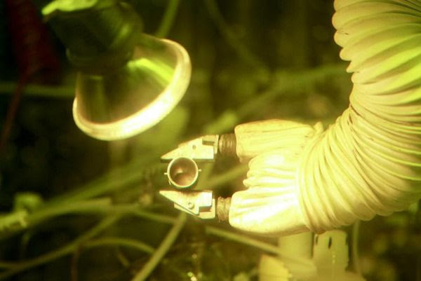 By producing 50 grams of plutonium-238, the Oak Ridge National Laboratory has demonstrated America's ability to provide a valuable energy source for deep space robotic and manned missions.