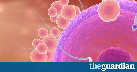 Fathers pass on four times as many new genetic mutations as mothers – study | Science | The Guardian