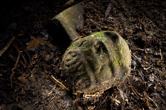 Fabled lost city discovered in Honduras ecological wonder: archeologist