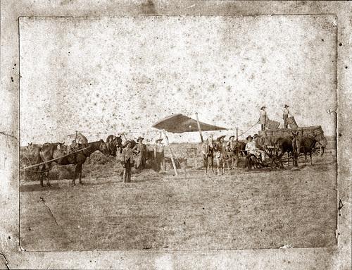 Men and horses at camp
