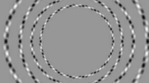 There are only 4 circles and none of them touch.