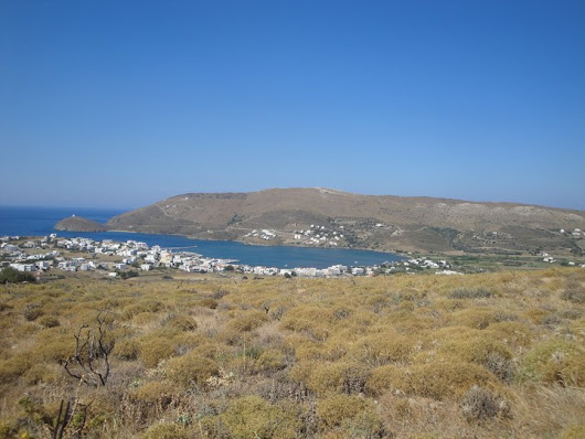 Property on an island on sale (14,500 m2)