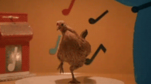 Chicken GIF - Find & Share on GIPHY