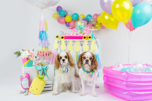 Kara's Party Ideas Tropical Pool Party for Puppies | Kara's Party Ideas