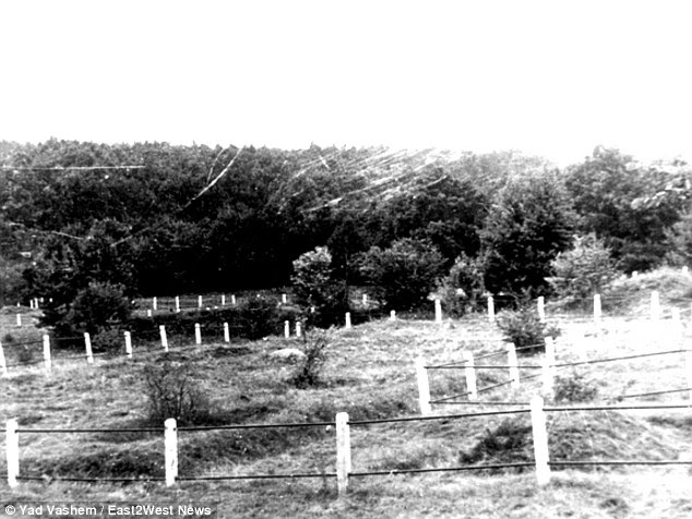 Memorial: There was also a mass grave at Pechora  (pictured), Ukraine, where many Jews were murdered