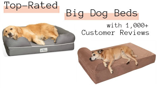 Top-Rated Big Dog Beds with 1,000+ Customer Reviews | Woof Woof Mama