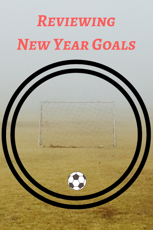 Reviewing New Year Goals | Mary-andering Creatively