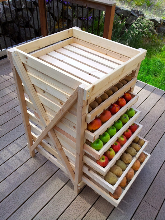 Storing Fresh Vegetables and Fruits for Months – Without Refrigeration | Think About Now