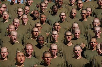 http://www.greatdreams.com/war/basic_training.jpg