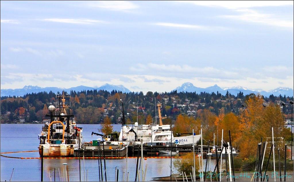 NOAA Fleet Still in Seattle For Now