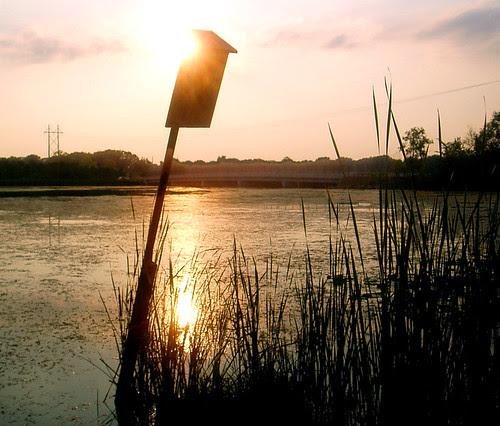 Sunset on a birdfeeder.