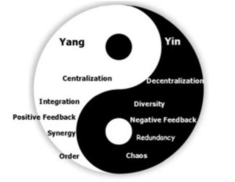 The Yin To My Yang Quotes