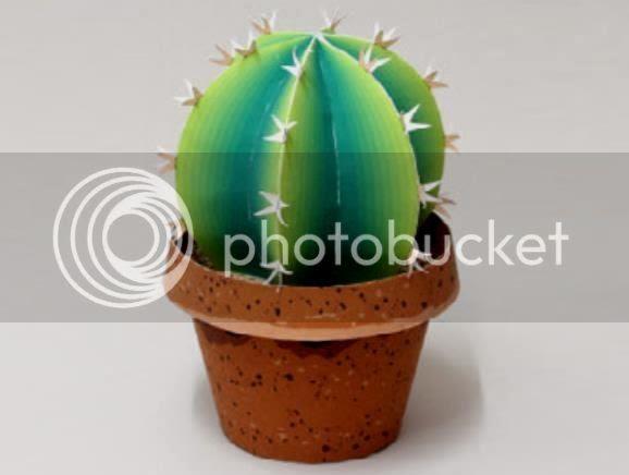photo cactuspaper1111_zps8546efe4.jpg