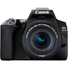 Canon EOS Rebel SL3 24.1 MP SLR - Black - EF-S 18-55mm IS STM Lens