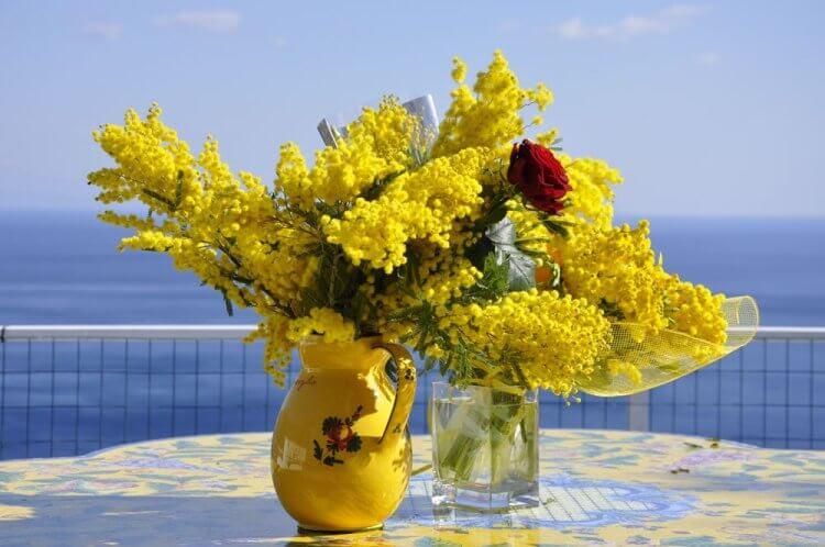 8 Marzo La Festa Delle Donne Si Celebra Anche Con Le Mimose