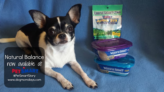 Take a Delectable Trip to PetSmart! #PetSmartStory - Dog Mom Days