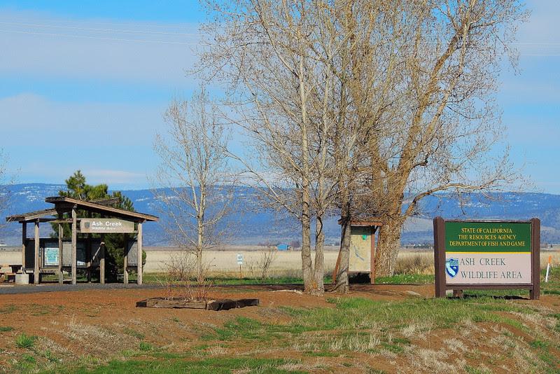 DSCN0812 Ash Creek Wildlife Area