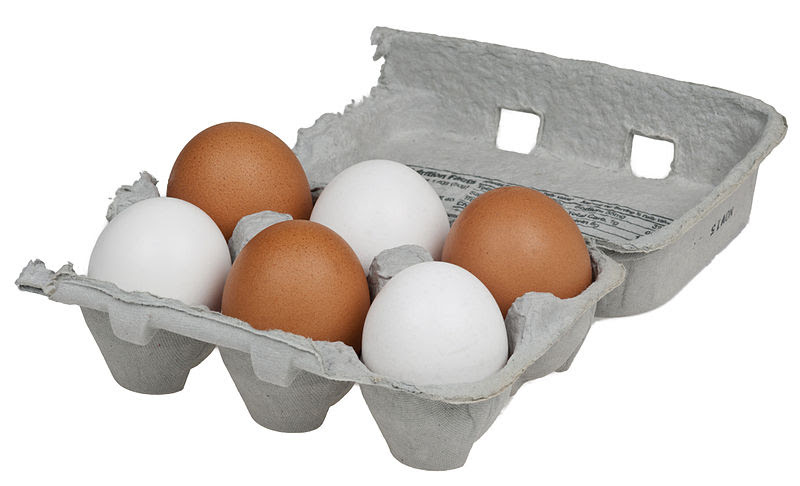 File:6-Pack-Chicken-Eggs.jpg