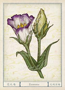 トルコギキョウ土耳古桔梗 の花言葉誕生花イラスト チルの工房