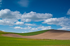 Palouse colors