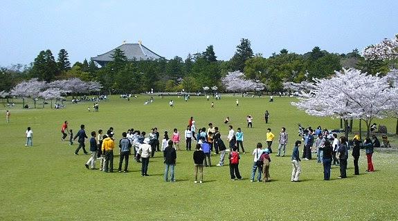 http://www.japan-guide.com/g7/4103_01.jpg