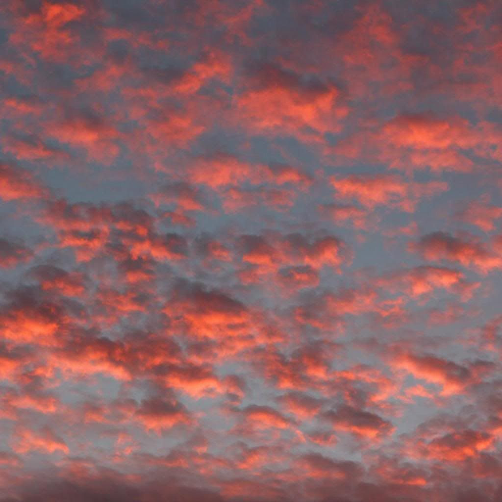 photo sunsetinst.jpg